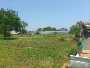 farm_img001